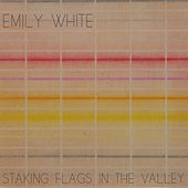 Staking Flags in the Valley by Emily White