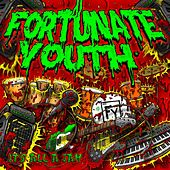 It's All a Jam by Fortunate Youth