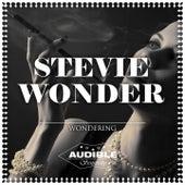 Wondering de Stevie Wonder