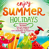Enjoy Summer Holidays by Various Artists