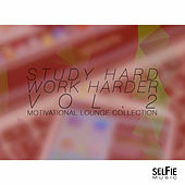 Study Hard, Work Harder Vol.2 - Motivational Lounge Collection by Various Artists