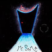 Closure by Mr. Sam