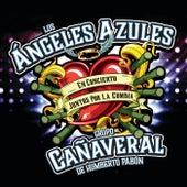 Juntos Por La Cumbia (Live) de Los Angeles Azules
