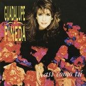 Así Como Tú by Guadalupe Pineda