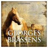 Le petit cheval de Georges Brassens