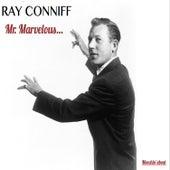 Mr Marvelous von Ray Conniff