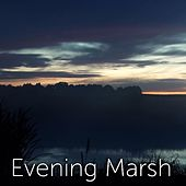 Evening Marsh by Tmsoft's White Noise Sleep Sounds