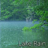 Lake Rain by Tmsoft's White Noise Sleep Sounds