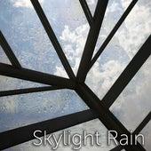 Skylight Rain by Tmsoft's White Noise Sleep Sounds