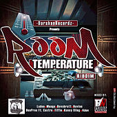 Room Temperature Riddim de Various Artists