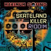 Skateland Killer Riddim by Various Artists