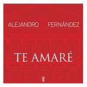 Te Amaré de Alejandro Fernández