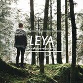 Leya (Die Grosse Chance) von Thorsteinn Einarsson