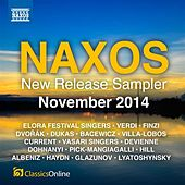 Naxos November 2014 New Release Sampler de Various Artists