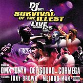 Def Jam Survival Of The Illest... by Various Artists