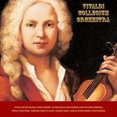 Vivaldi: The Four Seasons & Guitar Concerto - Walter Rinaldi: Piano Concerto, Adagio for Oboe, Orchestral, Guitar & Piano Works - Pachelbel: Canon in D Major - Albinoni: Adagio - Bach: Air On the G String & Violin Concerto by Various Artists