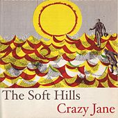 Crazy Jane by The Soft Hills