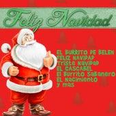 Feliz Navidad: El Burrito de Belen, Feliz Navidad, Triste Navidad, El Cascabel, El Burrito Sabanero, El Nacimiento y Mas von Various Artists