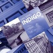 Indigo by Dan Siegel