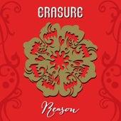 Reason by Erasure