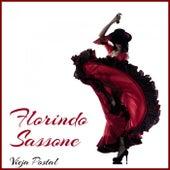 Vieja Postal de Florindo Sassone