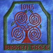 Birken Tree de Iona
