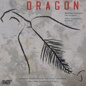 Dragon by Various Artists