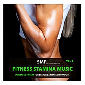 Fitness Stamina Music, Vol. 3 (Powerful Tracks for Excercise & Fitness Workouts) by Various Artists