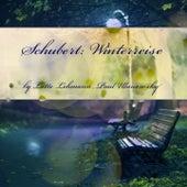 Schubert: Winterreise, D. 911 de Lotte Lehmann