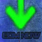 Edm Now von Various Artists