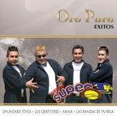 Oro Puro: Éxitos by Grupo Super T