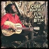 Fish Ain't Bitin' by Corey Harris