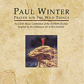 Prayer For The Wild Things by Various Artists