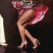 Disco Champs de The Trammps