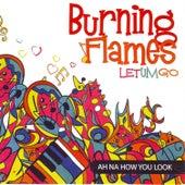 Let Um Go by Burning Flames