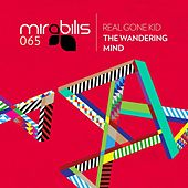 The Wandering Mind by Real Gone Kid