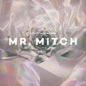 Parallel Memories by Mr. Mitch