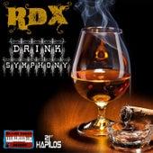 Drink Symphony - Single by RDX