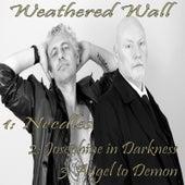 Needles de Weathered Wall