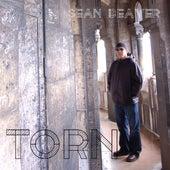 Torn by Sean Beaver