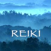Reiki - Soul of Healing, Vol.2 by Reiki Healing Music Ensemble