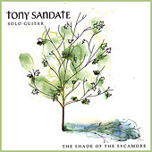 The Shade of the Sycamore by Tony Sandate