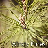 Windy Pines by Tmsoft's White Noise Sleep Sounds