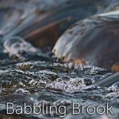 Babbling Brook by Tmsoft's White Noise Sleep Sounds