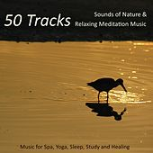 50 Tracks - Sounds of Nature & Relaxing Meditation Music for Spa, Yoga, Sleep, Study and Healing by Nature Sound Series