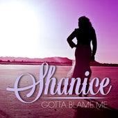 Gotta Blame Me de Shanice