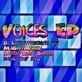 Voices Ep von Various Artists