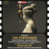 Brahms: Orchestral Works de Various Artists