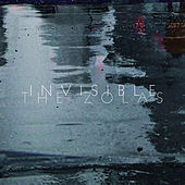 Invisible by The Zolas
