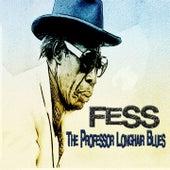 Fess, the Professor Longhair Blues (New Orleans Blues Story) de Various Artists